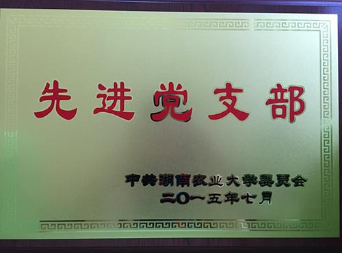 2015xjdzb2